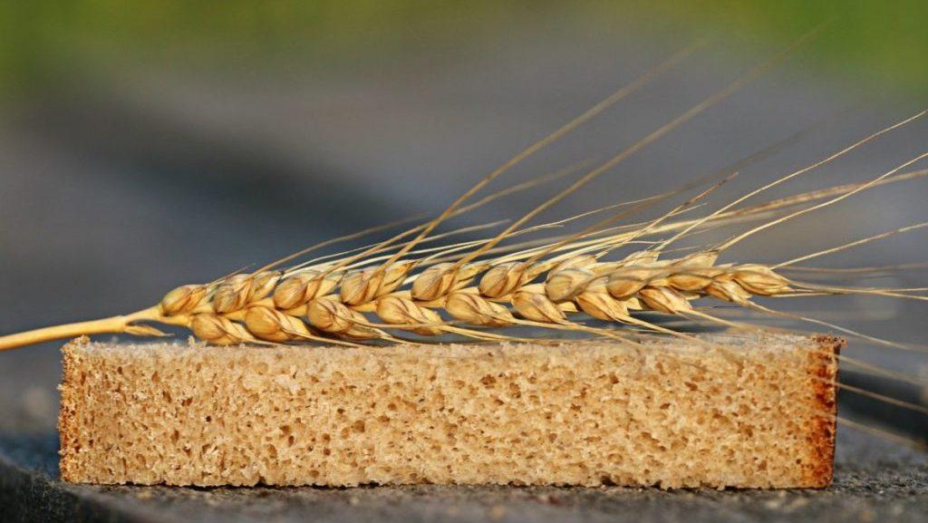 Brood met graan