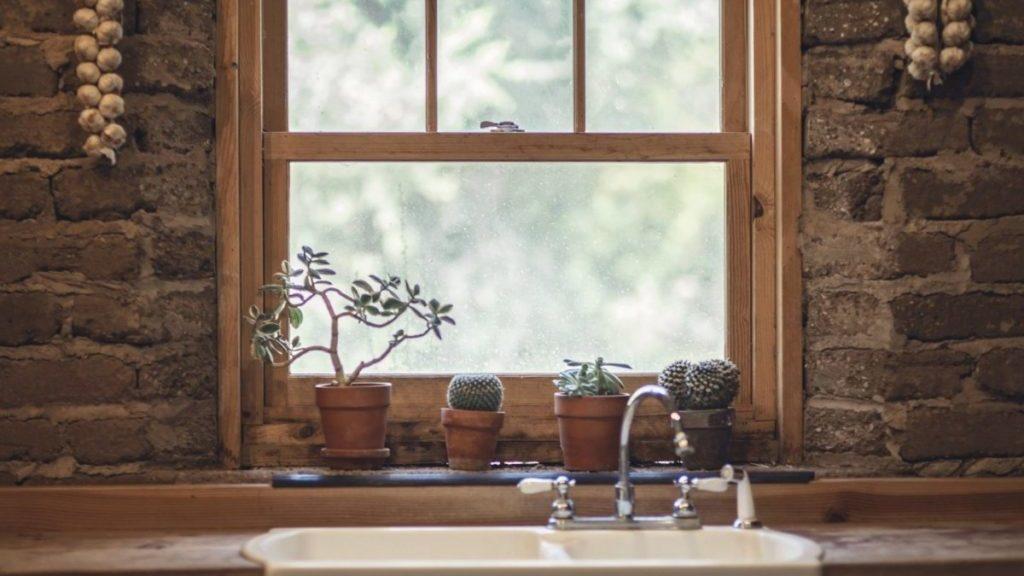 Raam met cacti op de vensterbank