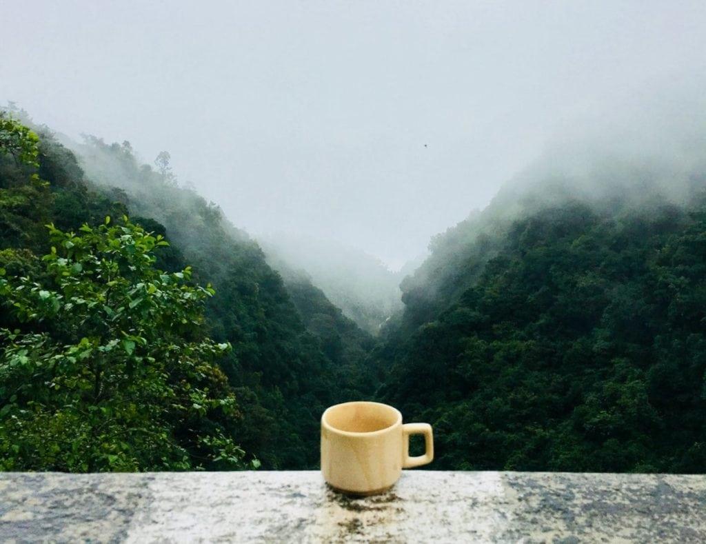 Koffie in mistige bergen