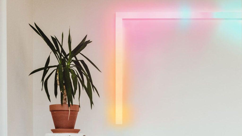 lichtbalk aan de muur, met plant op voorgrond