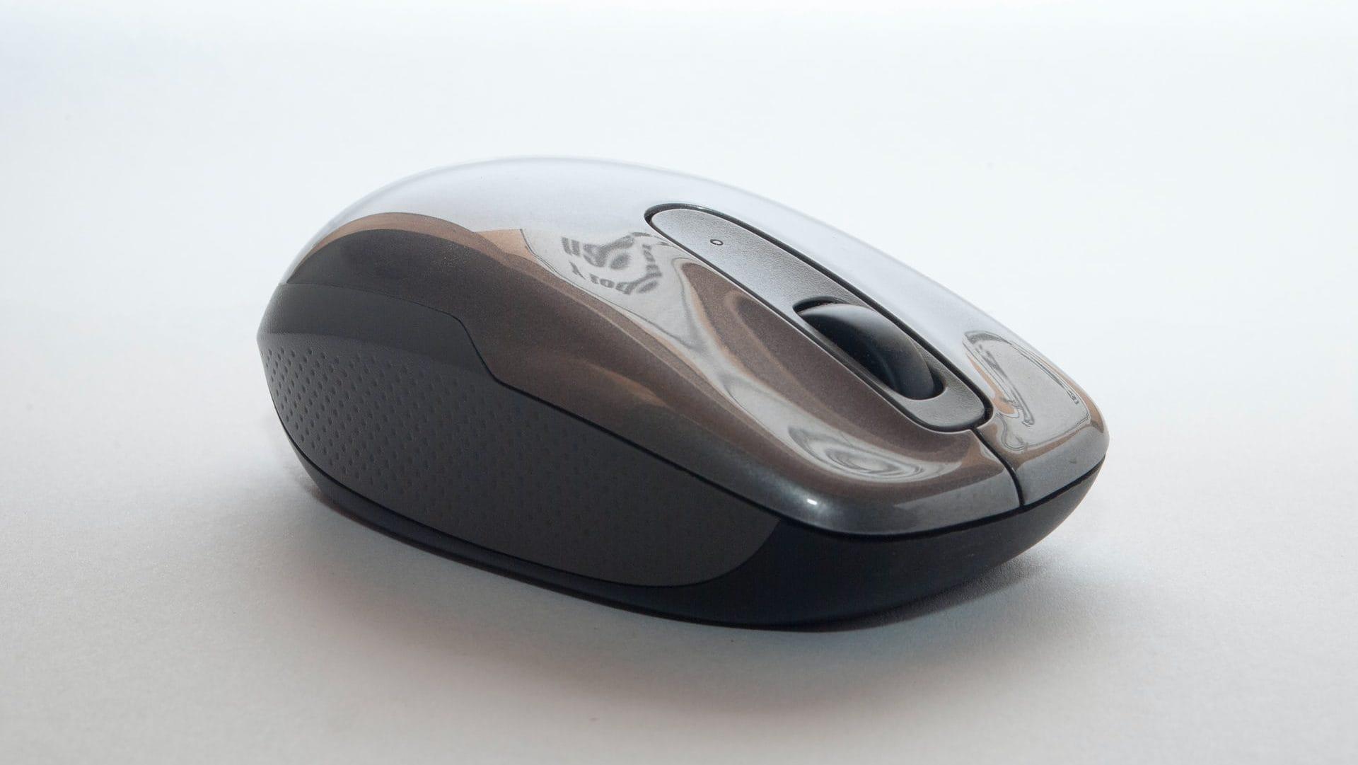 Grijze muis, zij-aanzicht