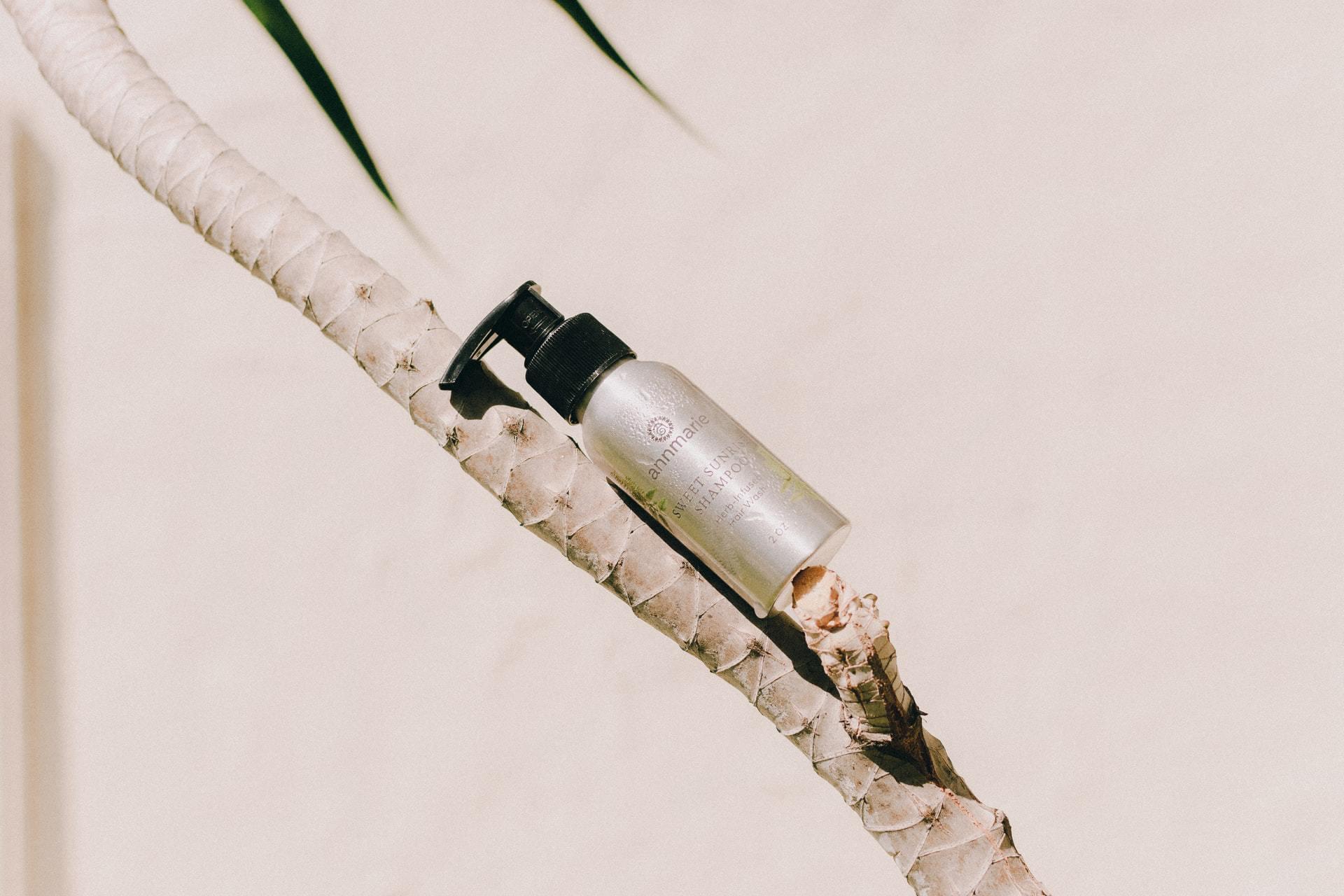 Natuurlijke shampoo op palmboom
