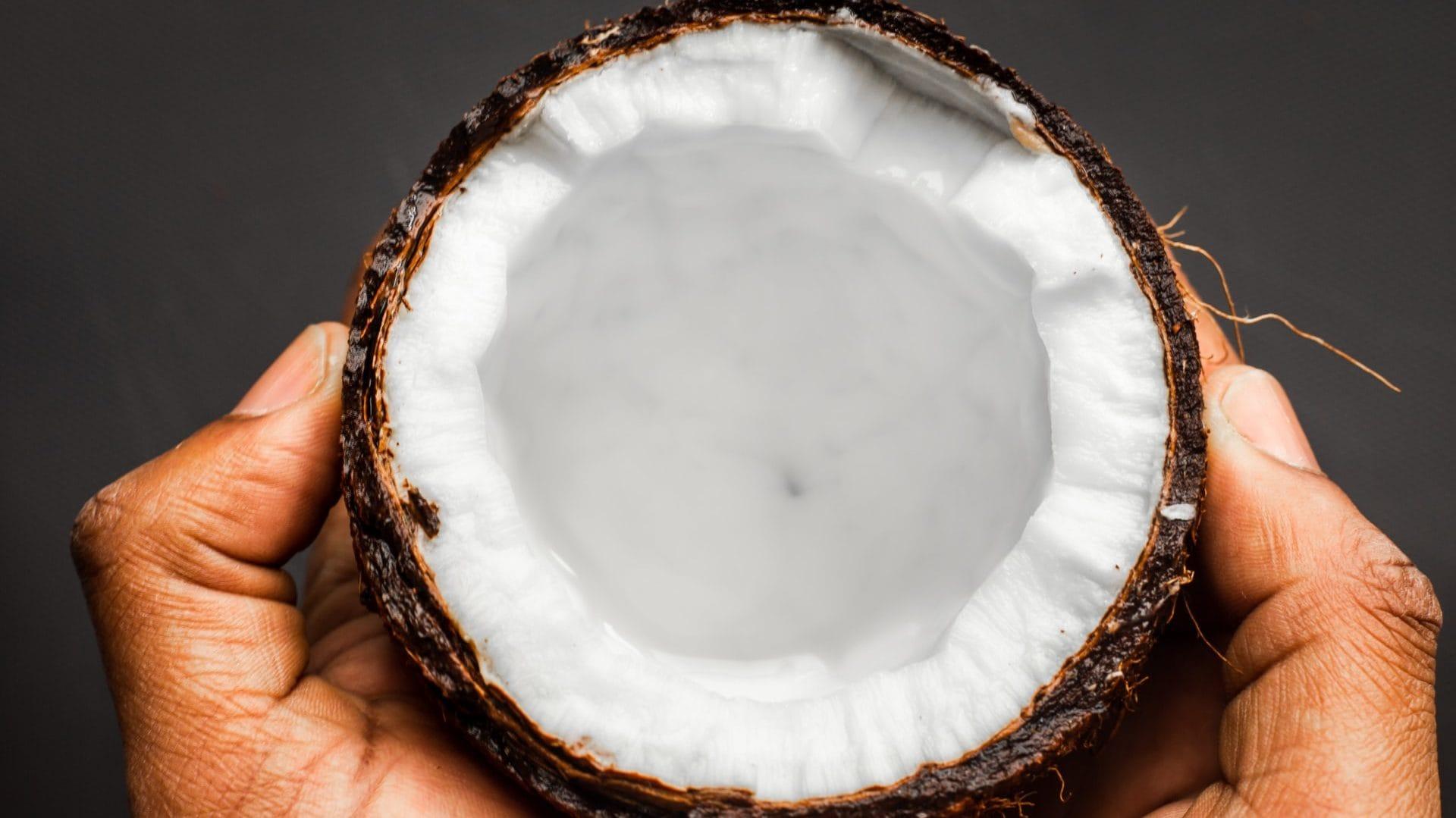 Open kokosnoot, vooraanzicht