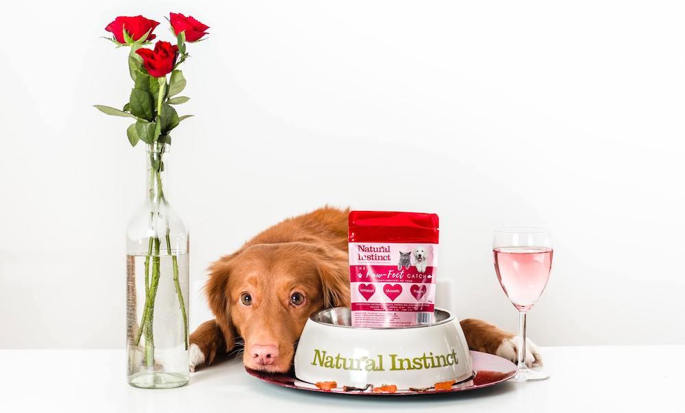 hond bij voerbak met rozen ernaast en een glaasje wijn
