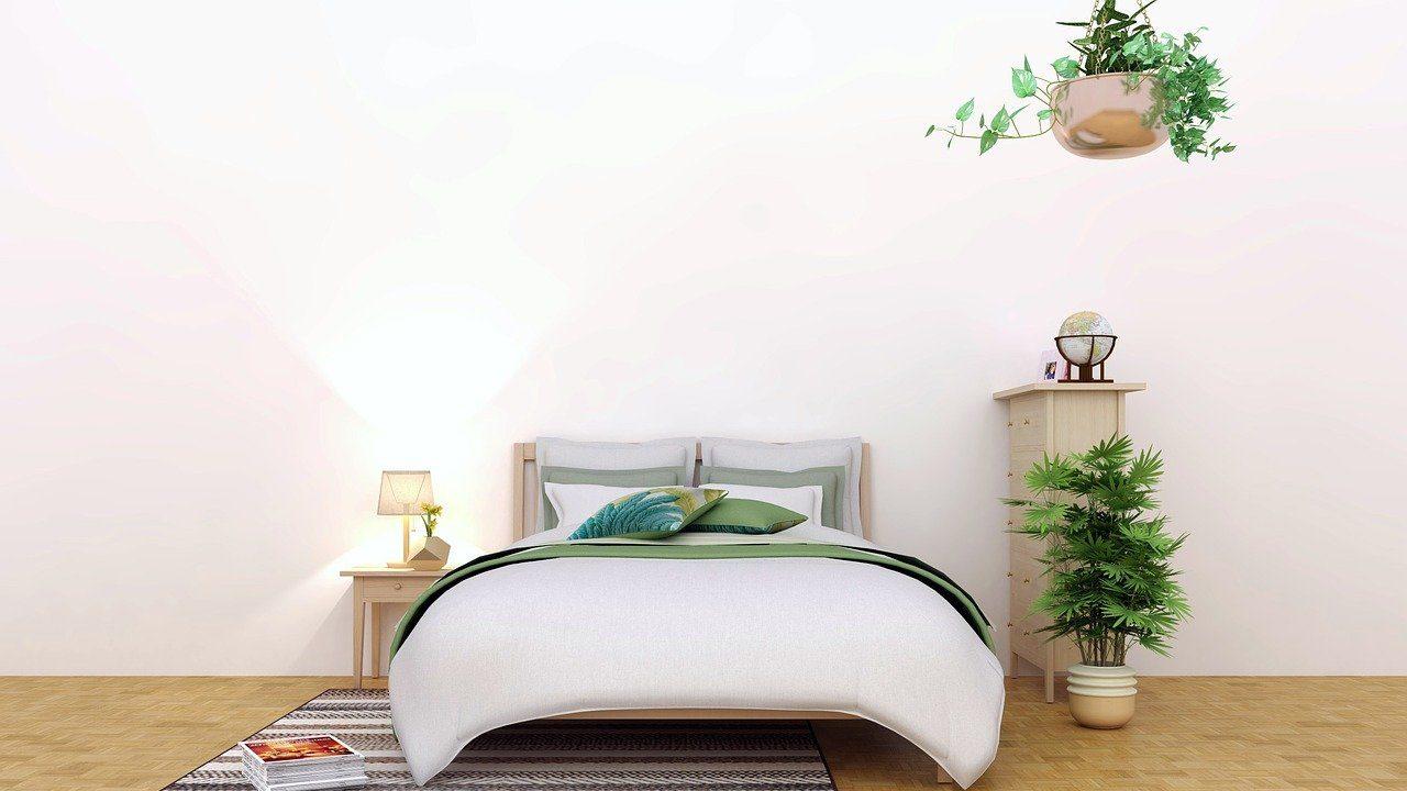 Slaapkamer met twee planten, houten vloer en witte muur. Vooraanzicht