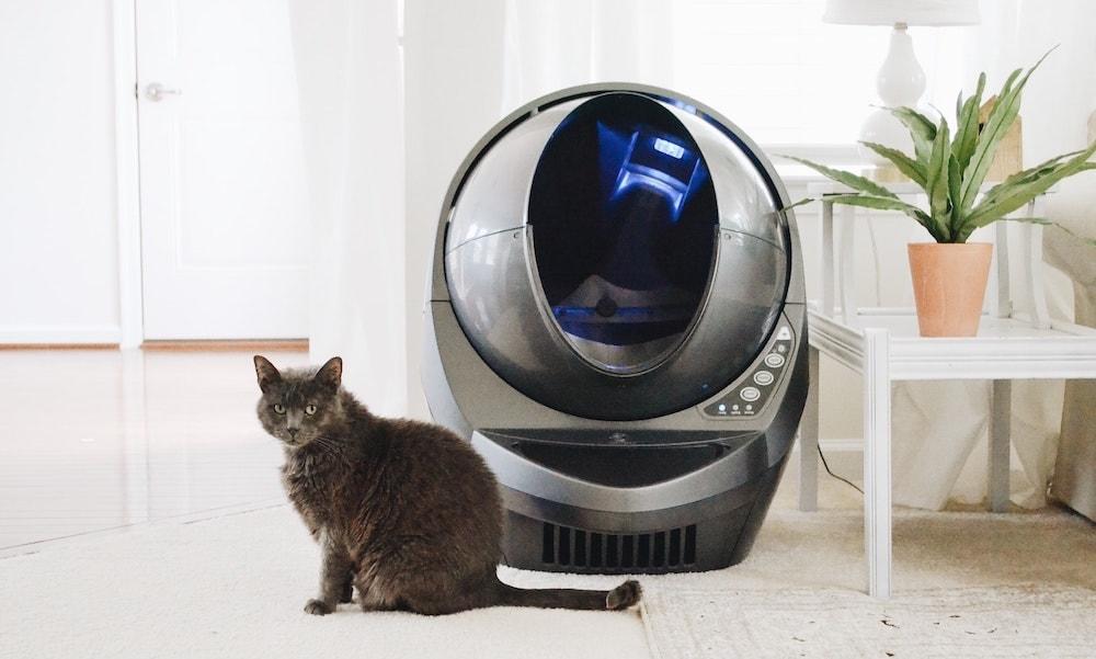kat voor automatische kattenbak