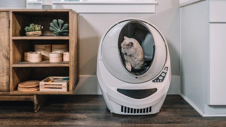 kat in toiletrobot voor katten