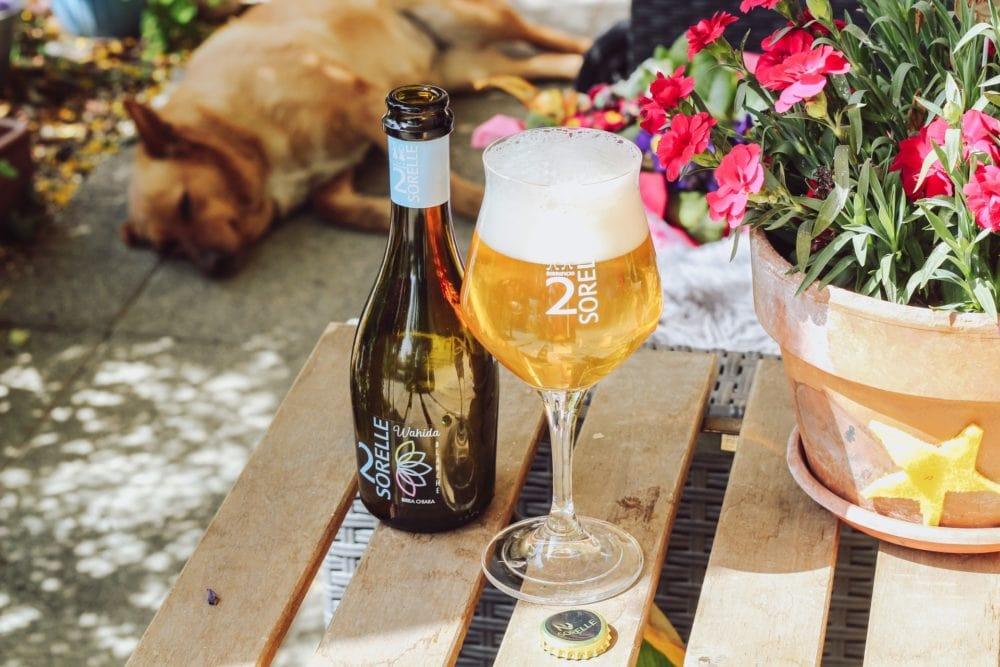 Glas bier in de tuin op tafel, vooraanzicht