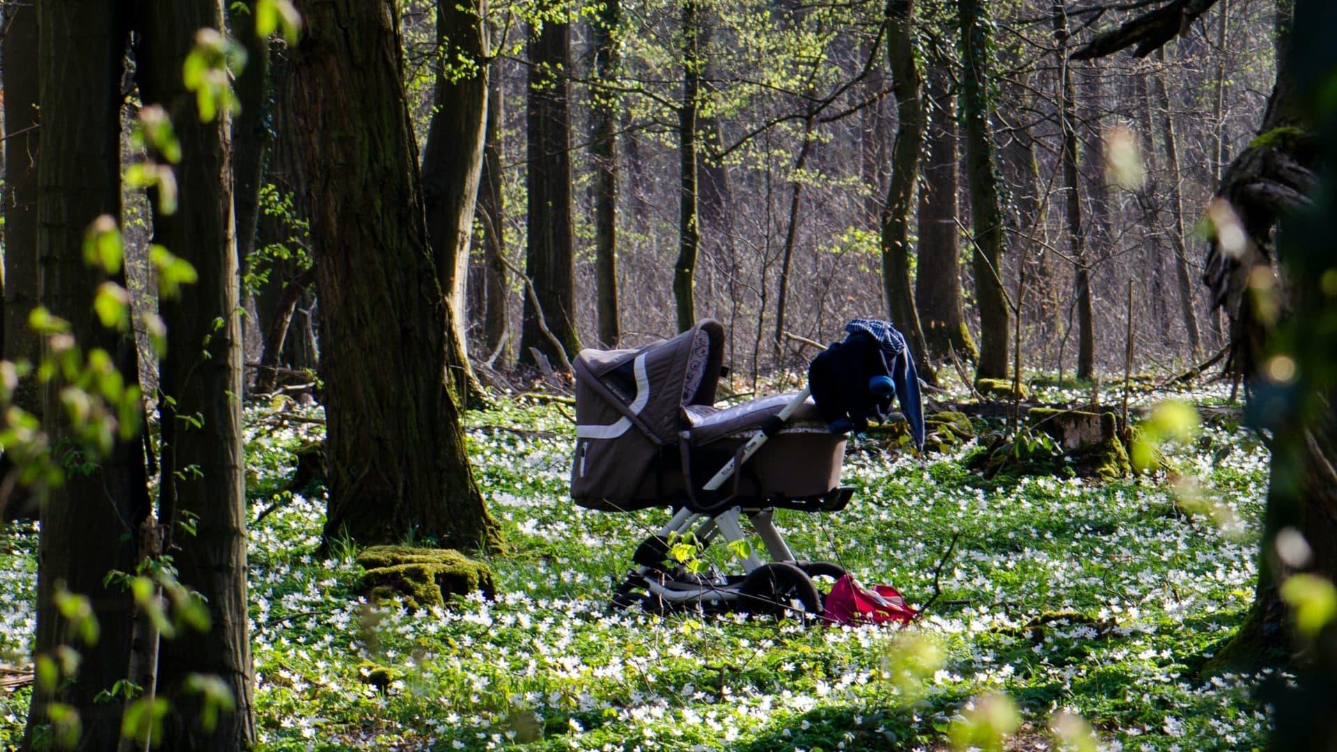 Kinderwagen in het bos, zij-aanzicht