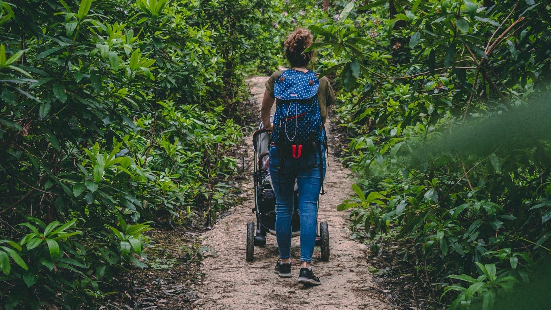 Persoon die door het bos wandelt met kinderwagen, achterzijde